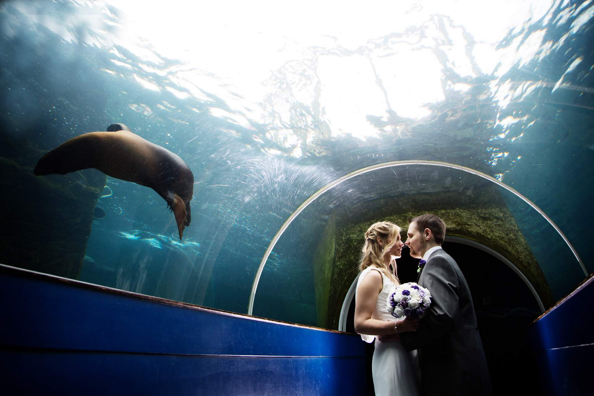 bristol zoo wedding