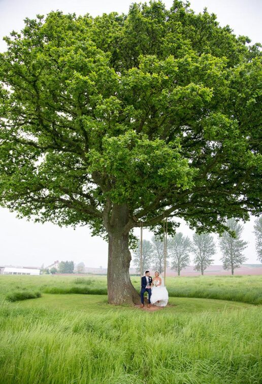 wedding couple sitting at the swing behind the large oak tree at quantock lakes wedding venue